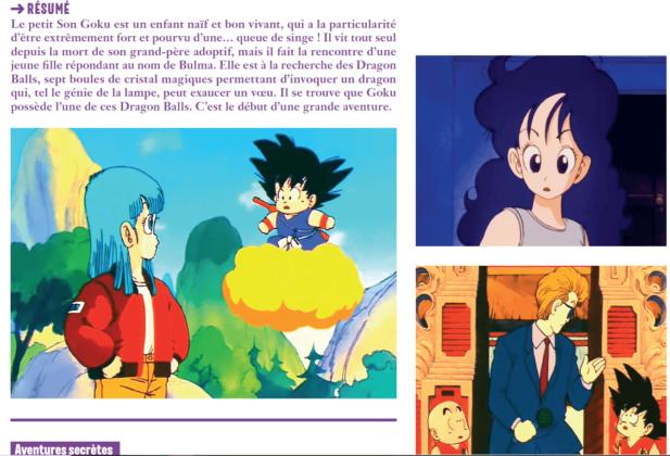 100 séries d'animation japonaises